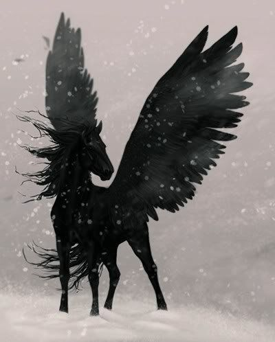 Because all black horses are really pegasi.  Really.                                                                                                                                                      More