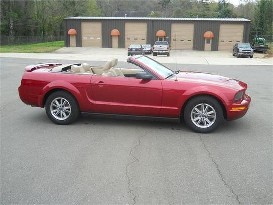 Awww! Looks just like my Derby! He was made to order just for me! Brand new :) --- 2005 Mustang