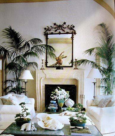 Jane Seymour Making Yourself At Home Book Blue Bed Better Decorating Bible Living  Room Decor Palm Tree Part 33