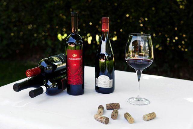 Un viaggio alla scoperta dei vini ed i vitigni più famosi d'Italia: sesta puntata. #vini #vitigni #italia