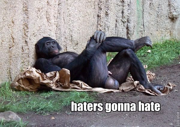 holy balls this makes me laugh: Gonna Hate, Like A Boss, Ball, Monkeys, Funny Pictures, Haters Gonna, Funny Stuff, Likeaboss, Animal