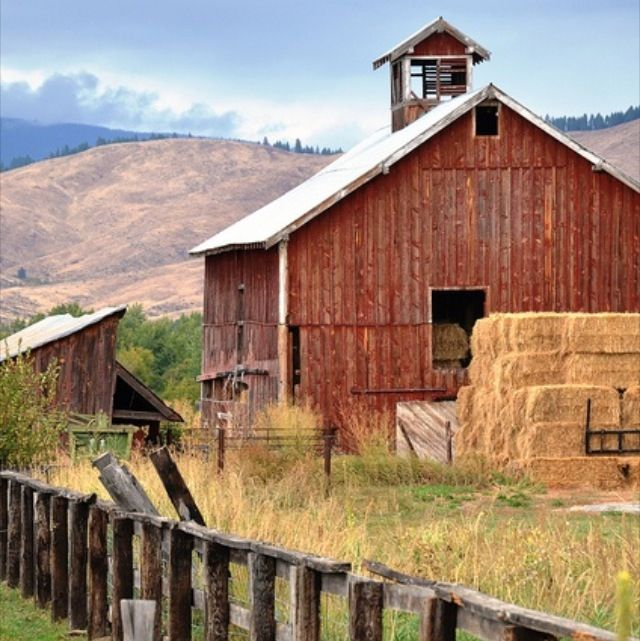 17 Best Ideas About Barns Sheds On Pinterest