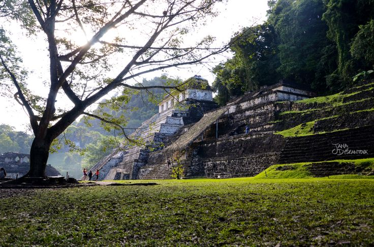 Mexico, Palenque - Maya ruins http://janadyskantova.cz/gallery/central-america/