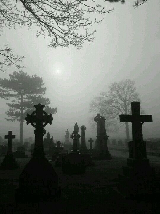 This reminds me of the Gulch Cemetery in our book The Halloween pickle.