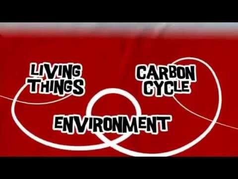 22 best biology b2 images on pinterest biology earth science aqa gcse bbc bitesize the carbon cycle youtube urtaz Images