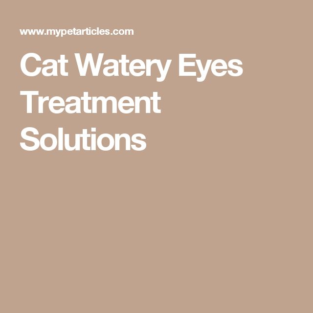 Watery Eyes In Dogs Home Remedies