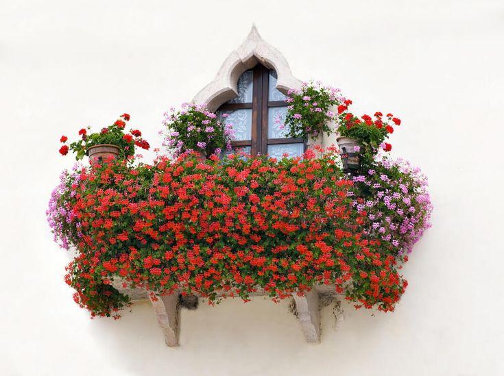 40 Window and Balcony Flower Box Ideas (PHOTOS) - Home Stratosphere