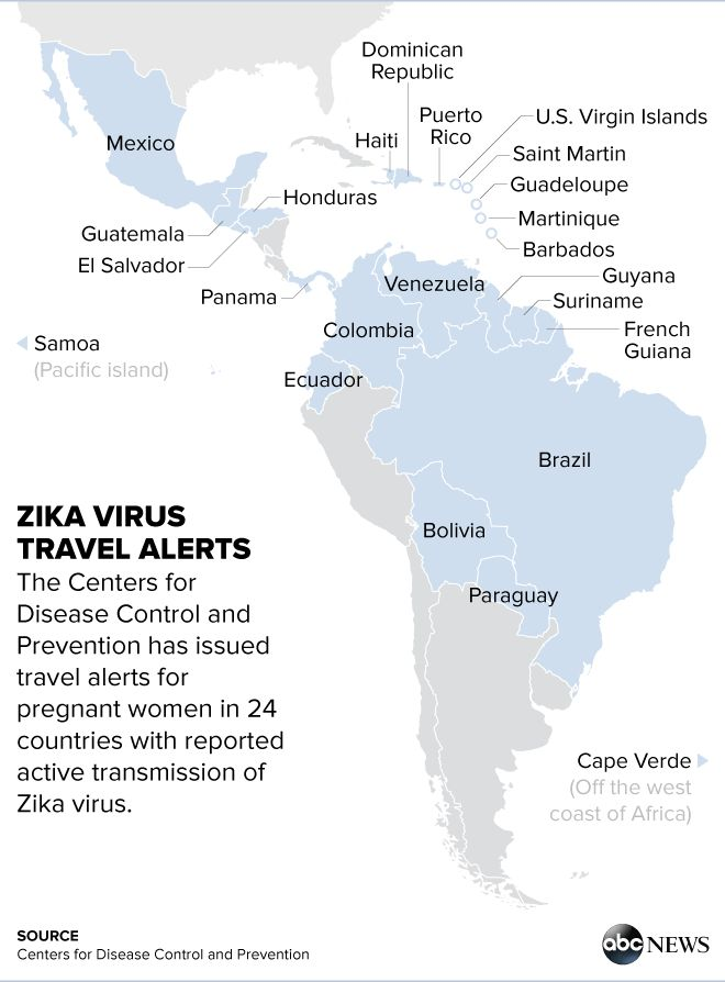 Origin of Zika Virus Outbreak in Brazil May Be Linked to Major Sporting Events - ABC News