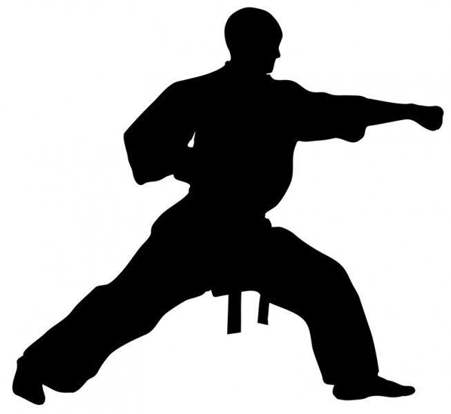 taekwondo silhouette - Bing images | Tae Kwandoe ...