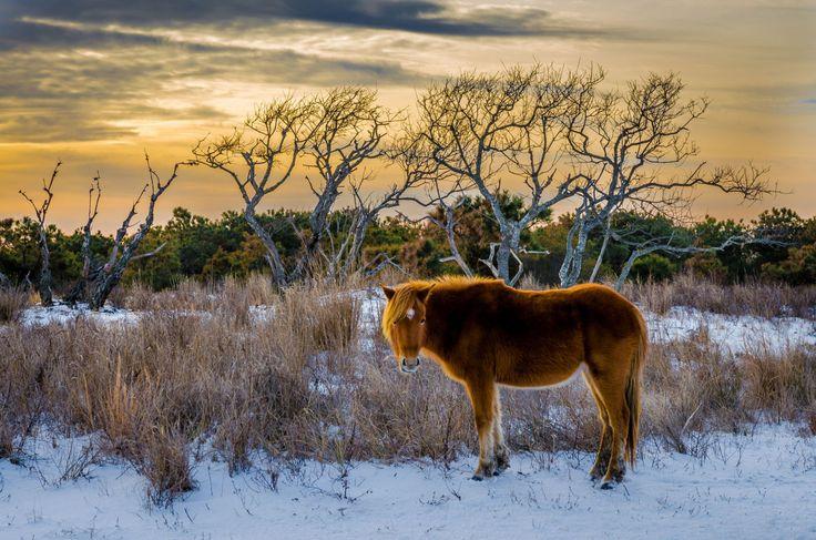 2440 best images about winter on pinterest snowed in for Best weekend getaways in winter