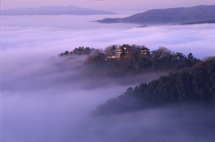 Bicchū Matsuyama Castle is at the top of Gagyu mountain. And it is the highest spot which has a castle tower in Japan.