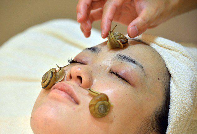 Чистка лица улитками | Нетрадиционные методы лечения