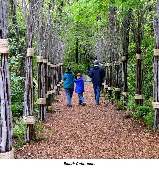 Garden In The Woods Is A Beautiful Hike In Framingham Massachusetts In 2020 Garden In The Woods Beautiful Hikes Native Garden