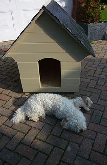 Robinson Garden - Bespoke Garden Products Selling a wide range of products including Birdtables, Dovecotes and Dog Kennels. Pictured is one of our bespoke wooden Dog Kennels handmade and painted with the famous Farrow & Ball. Visit www.robinsongarden.co.uk