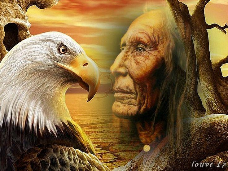 Indios Americanos Lobos - Pesquisa Google