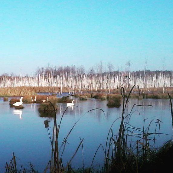 Poleskipark#bylotak:)))#