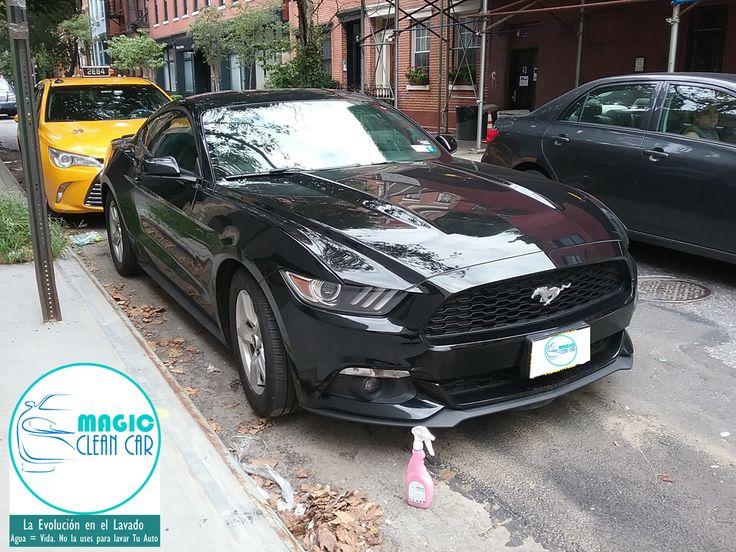 Cliente Magic Clean Car, EL #Mustang brilla espectacular #Lavarsinagua - Deja Tu Auto Limpio, brillante y protegido sin utilizar una Gota de Agua