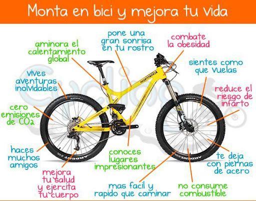 Salud on pinterest - Beneficios de la bici eliptica ...
