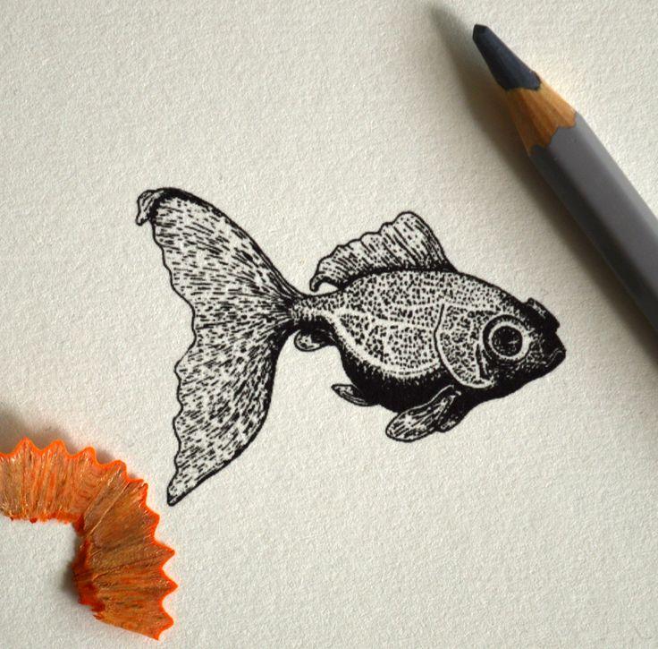 Zlatá rybka (miniatura)  Gold fish