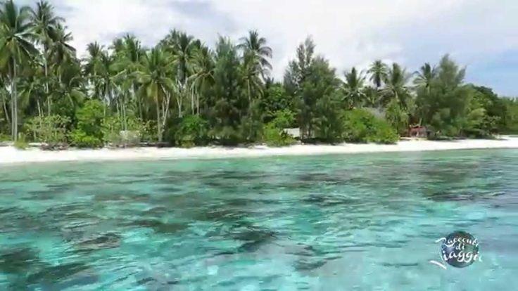 Agusta Eco Resort - Raja Ampat - Papua