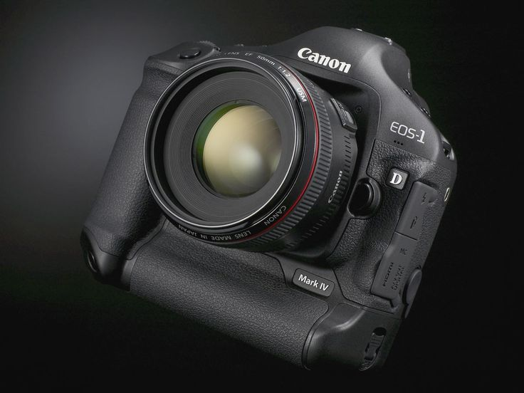 Canon 1D mark IV. Love it. Can basically shoot in the dark. Regularly shoot at 6400iso and the autofocus kills with no flash.