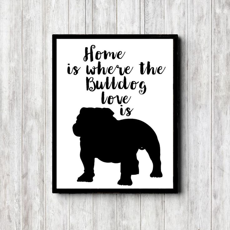 Bulldog Quote Wall Art Print - Bulldog Silhouette - Dog Quote Printable - Home Is Where The Bulldog Love Is - Pet Art Poster -Black Wall Art by PrimroadDesigns on Etsy https://www.etsy.com/listing/386698140/bulldog-quote-wall-art-print-bulldog