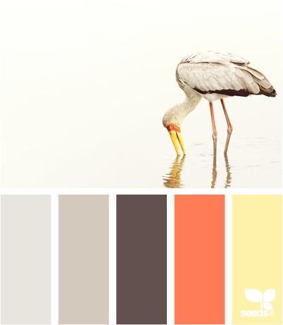 stork tones: Color Palettes, Living Rooms, Design Seeds, Color Combos, Color Schemes, Baby Rooms, Colour Palettes, Rooms Color, Stork Tones