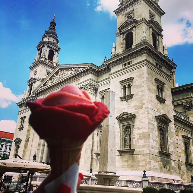 I was taken by surprise by its beauty. St Stephan's Basilica is a must. Try admiring it with a twist of rose shaped ice cream, and climb to the top to see the panorama views this city has to offer #travelbudapest #ststephansbasilica #rose #icecream #roseicecream #travelthewold #citycenter