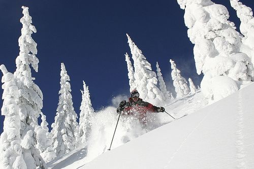 Snowscape!  Whitefish Ski Resort, Montana