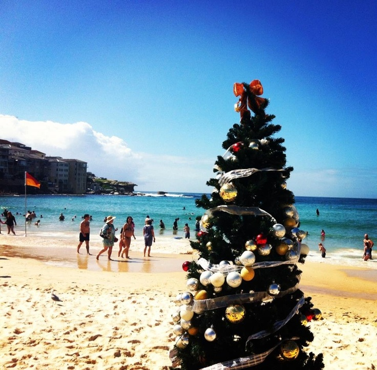 A Typical Aussie Christmas - Sun, Sand, Cold Beer and Shrimps. Not a snowman in sight!