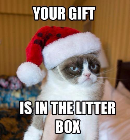 Ohhhh Grumpy Cat... For more funny Christmas pics visit www.bestfunnyjokes4u.com/funny-christmas-pics/