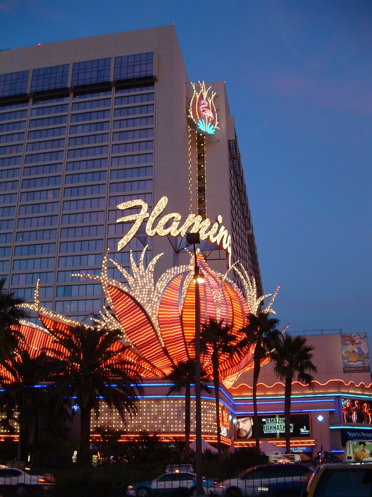 1000+ Ideas About Flamingo Hotel On Pinterest