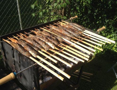 Für denSteckerlfisch zunächst die Forellen abspülen, mit Küchenrolle abtrocknen, innen und außen mit Zitronensaft einreiben, mit Salz und mit