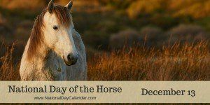 December 13, 2015 – NATIONAL COCOA DAY – NATIONAL DAY OF THE HORSE – NATIONAL VIOLIN DAY – WORLDWIDE CANDLE LIGHTING DAY – WORLD CHORAL DAY – PICK A PATHOLOGIST DAY | National Day Calendar