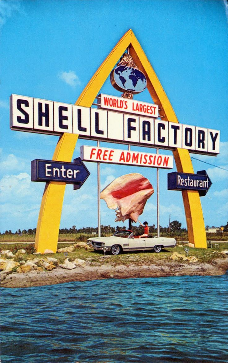 shell city ft myers fl - Google Search
