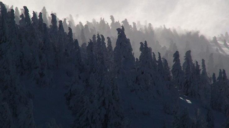 Prisla zima na fatranske hrebene
