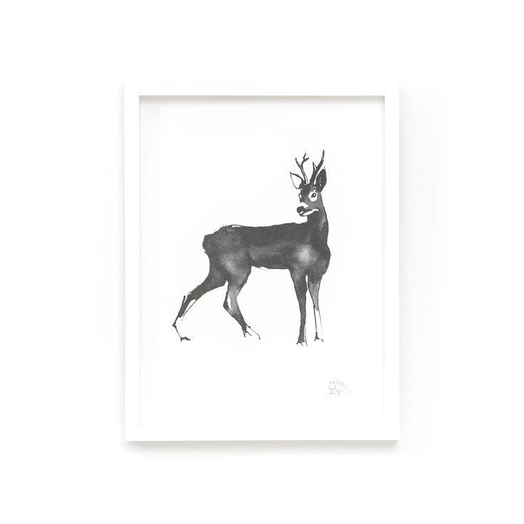 Roe Deer Fine Art print on Paper Teemu Järvi Illustrations http://www.teemujarvi.com/en/shop/paper-prints/59-deer.html
