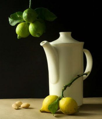 Still Life With Lemons by Cotan