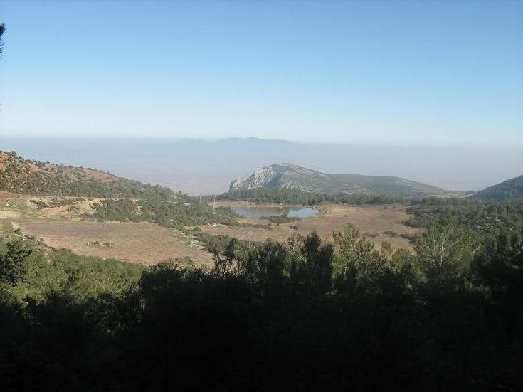Ülkemizdeki Milli Parklar ,bol görselli,Manisa - Spil Dağı Milli Parkı    Yeri: Manisa ili    Ulaşım: Ege Bölgesinde Manisa ilinin yamaçlarına yaslandığı Spil Dağı üzerinde yer alan Milli Park Manisa'dan 24 km.lik bir karayolu ile ulaşılmaktadır.