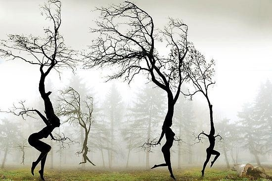 "Art: Kunst Allerlei ~Foto ""In The Mist"", Digital Art van fotograaf Igor Zenin~"