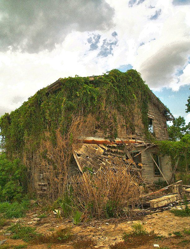 Abandoned House near Osowaw Junction, FL