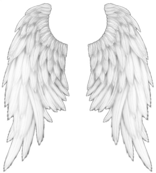 White Angel Wings Tattoos: 1000+ Images About Angel Wings On Pinterest