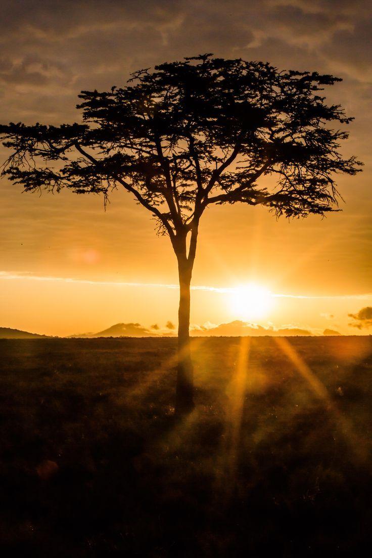 Nature Beautiful Scenery Sunrises In Kenya 3840x5760 Kenya Travel Honeymoon Backpack Backpacking Va Nature Photography Scenery Pictures Beautiful Sunrise