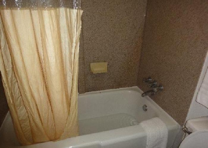 Curtain Bathtub Clogged, Bathtub Clogged How To Fix, Bathtub Clogged Frozen  ~ Home Design