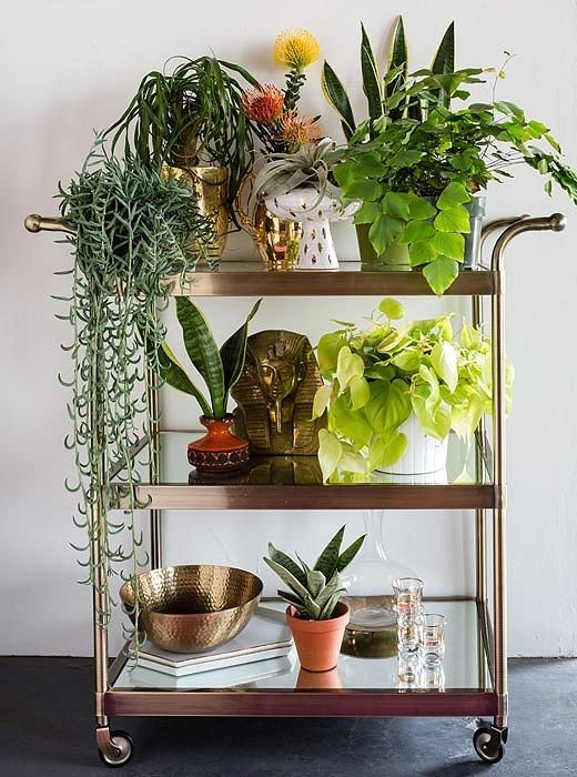 Try using a bar cart for a mobile station for indoor potted plants to get greenery on the go! Perfect for a home office or entryway. Studio Tour: Justina Blakeney's Boho Space - See the full tour on our Style Guide!
