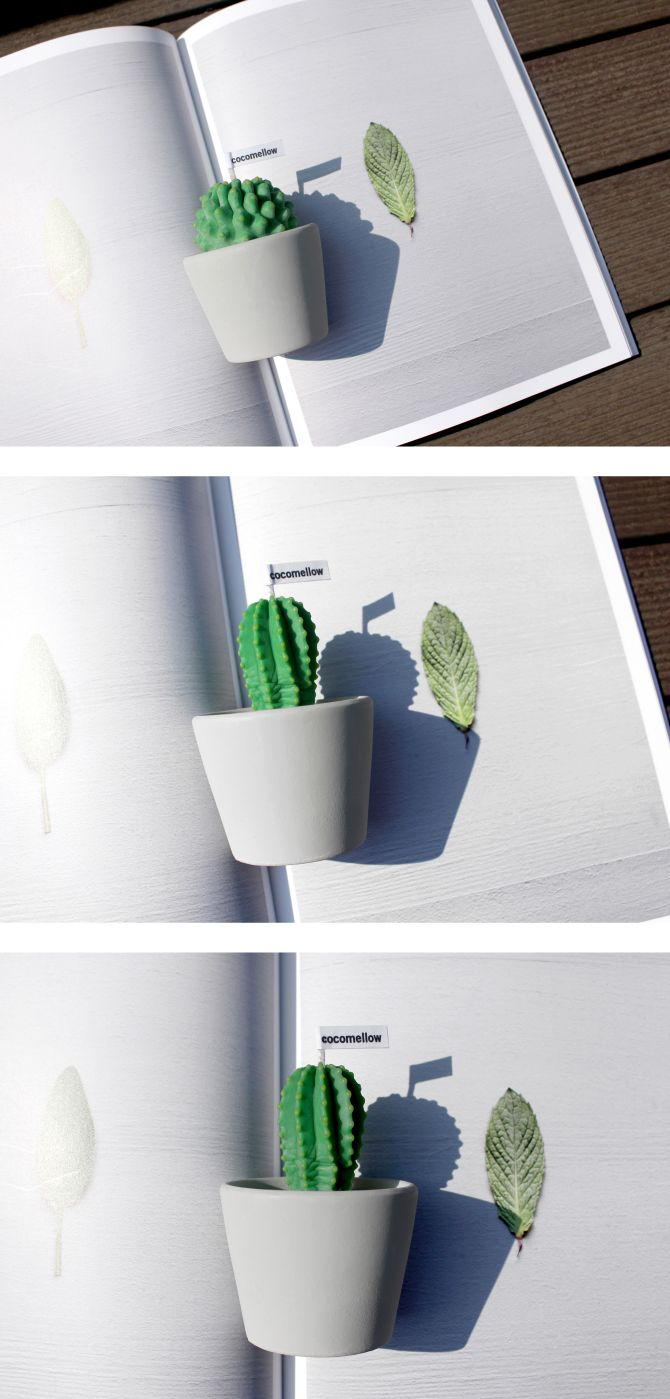 Little cactus candles designed by the atelier cocomellow!  #candle #design #cactus #interior #handmade #atelier #cocomellow #캔들 #선인장캔들 #캔들공방 #코코멜로우
