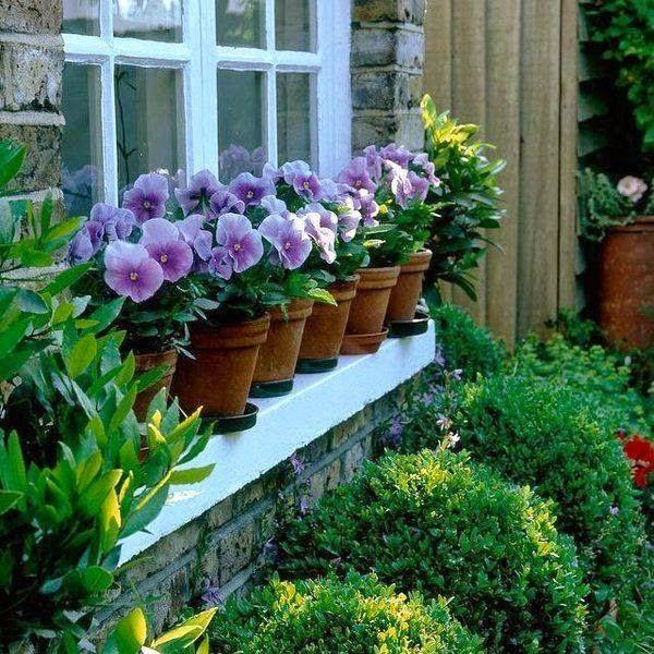 violetas na janela | Muita inspiração para um dia só , não?