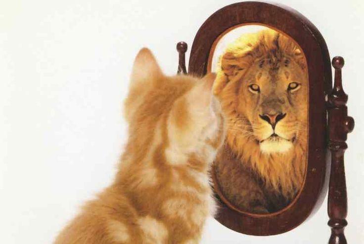 self pride - Google Search