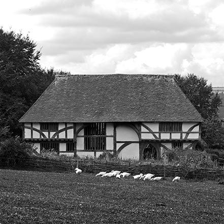 Material Matters: Wood #manser #wood #timber #oak #frame #house #half #timbered #hall