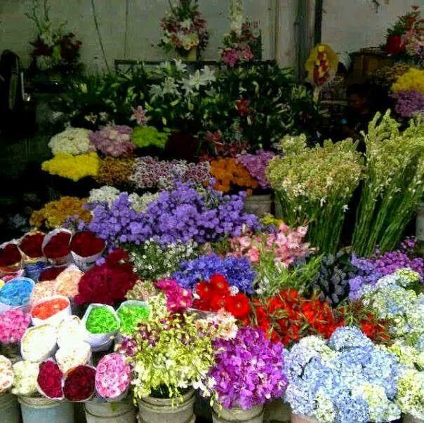 TOKO BUNGA GHUNFLORIST JAKARTA: Jual bunga hydrenia | jual bunga tulip
